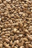Organic shelled almonds vertical image full frame. Vertical image full frame shelled almonds image shot in selective focus to ad copy space blurred background royalty free stock photos