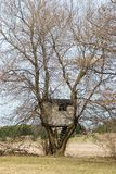 Vertical image of a treehouse. In early spring Royalty Free Stock Photography