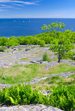 Vertical landscape of Swedish sea coast in spring season Stock Photos