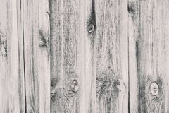 Vertical light gray boards. Texture. Background.  Stock Photography