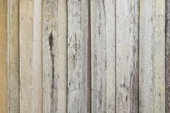 Vertical Line of Wood background texture stock photo