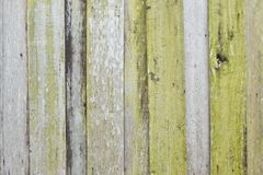 Vertical Line of Wood background texture royalty free stock image