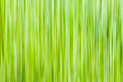Vertical lines in yellow-green shades Royalty Free Stock Images