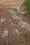 Vertical MCU of muddy jungle road with large puddle visible Stock Photography