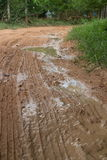 Vertical MCU of muddy jungle road with large puddle visible and vegetation at top background Royalty Free Stock Photos