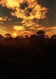 Vertical misteriosa de la puesta del sol del paisaje ilustración del vector