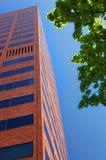 Vertical moderno alto do prédio de escritórios do tijolo Fotografia de Stock Royalty Free