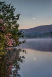 Vertical Moon and Mist Over Price Lake North Carolina. Vertical misty morning as moon reflects in the water of Price Lake in early summer as pink wild catawba stock image