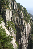 Vertical mountain cliff. Vertical rock cliff on a mountainside Stock Image