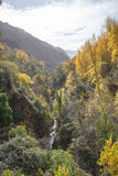 Vertical mountain landscape in autumn Stock Photography