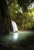 Vertical nature background of tropical waterfall in jungle Royalty Free Stock Image