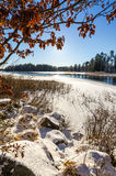 Vertical nature landscape in winter season Royalty Free Stock Images