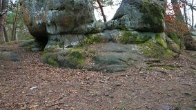 Rock in fontainebleau forest stock video