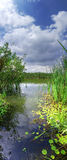 Vertical Panorama Of The River Stock Images