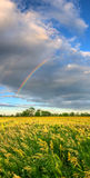 Vertical panorama with rainbow Royalty Free Stock Photos