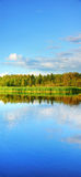 Vertical panorama of wetland Royalty Free Stock Images