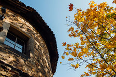 Vertical perspective of one of the towers at Ksiaz castle, just Stock Photography