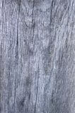 Grey wooden photo texture close-up stock image
