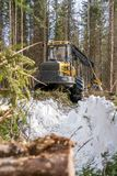 Vertical photo of logger in winter forest Royalty Free Stock Photography