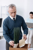 Vertical photo of low-spirited worker being in the office. Time flies. Serious gray-haired men putting his notebook and plant into box bowing head while looking Royalty Free Stock Photos
