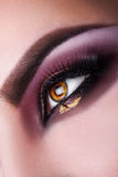 Vertical photo of woman brown eye looking away in studio.macro Stock Images