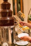 Woman hand dipping fruit to Chocolate Tower stock photo