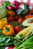 Fresh summer vegetables, in close-up. Vertical photography, fresh summer vegetables, in close-up Stock Images