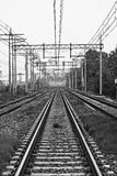Vertical picture of double rail track. Vertical black and white picture of double rail track Royalty Free Stock Photography