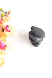 Vertical picture of stones and flowers on a white background Royalty Free Stock Photo