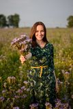 Vertical portrait of a happy girl in a field at sunset stretches a bouquet of field purple flowers, smiling. Vertical portrait of a happy girl in field at sunset stock images