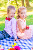 Vertical portrait of a six-year old couple at a picnic Stock Photography