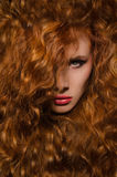 Vertical portrait of woman with red hair Stock Image