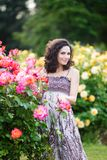 A vertical portrait of young Caucasian woman with dark brown curly hair near pink rose bushes, looking to her left, smiling with stock photography