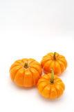 Vertical Pumpkins over white Royalty Free Stock Photography