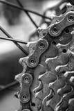 Vertical Rear mountain bike. Royalty Free Stock Photos