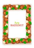 Vertical Rectangle colored frame composed of delicious of hazelnut. Vector card illustration. Filbert nuts frame, walnut. Fruit in the shell, whole, shelled Stock Images