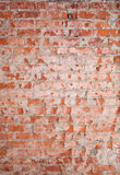 Vertical red brick wall texture Stock Images
