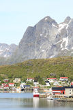 Vertical Reine in Lofoten Royalty Free Stock Image