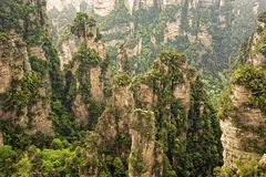 Vertical rock formations of Zhangjiajie National Forest Park, Hu Stock Image