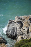 Vertical rock in sea washed by waves. During storm shot on sunny day Royalty Free Stock Photo