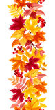 Vertical seamless background with colorful autumn leaves. Vector illustration. Stock Photo