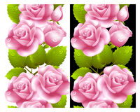 Vertical seamless background with red roses. Royalty Free Stock Image