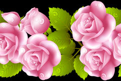 Vertical seamless background with roses. Stock Photo
