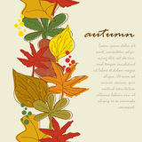 Vertical seamless border with autumn leaves backgr Stock Photo