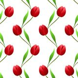 Vertical seamless pattern with red tulips on a white background. Vertical seamless pattern with red tulips on a white background, beautiful illustration Royalty Free Stock Photo