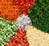 Vertical set meat vegetable salad pepper tomato cheese cucumber dill parsley choice of ingredient for mix salad diet dish stock images