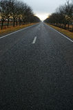 Vertical shot of countryside road Royalty Free Stock Image