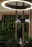 Vertical shot of decorative lamps in the cafe surrounded by green plants