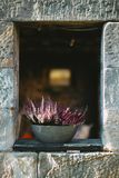 Vertical shot of English lavender flowers in a vase on a concrete opening