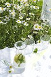 Vertical shot of healthy drink with fresh lemon and leaves of mint on the white table in the garden.Summer picnic in the daisies g stock image